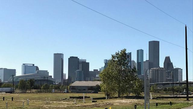 402 Schwartz, Houston, TX 77020 (MLS #40341941) :: Texas Home Shop Realty