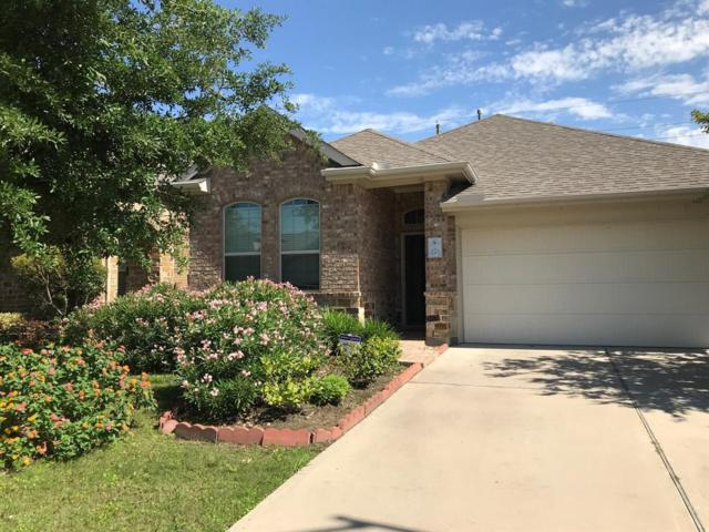 28706 Baughman Ridge Drive, Katy, TX 77494 (MLS #40365661) :: Fine Living Group