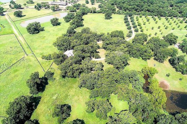 35545 Vernon Frost Road Road, Fulshear, TX 77441 (MLS #40470773) :: Green Residential