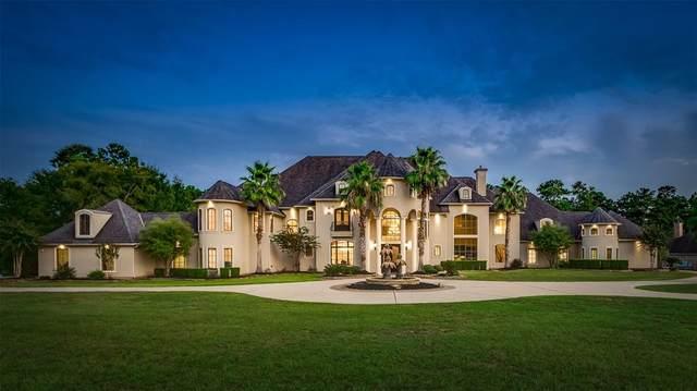 28322 Meadow Falls Dr, Magnolia, TX 77355 (MLS #40496377) :: Green Residential