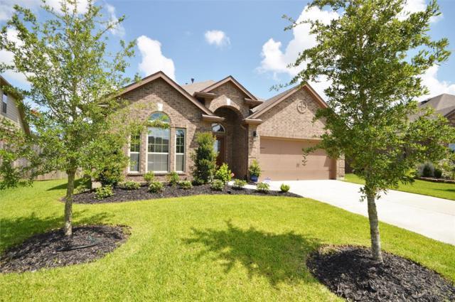 4002 Oak Grove Lane, Pearland, TX 77581 (MLS #40498684) :: Christy Buck Team