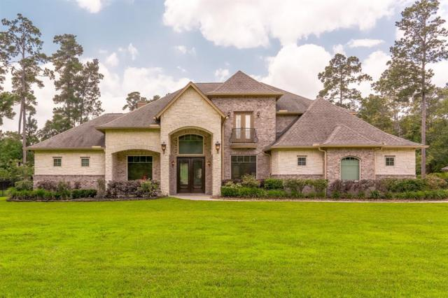28102 Whispering Maple Way, Spring, TX 77386 (MLS #40507326) :: Giorgi Real Estate Group