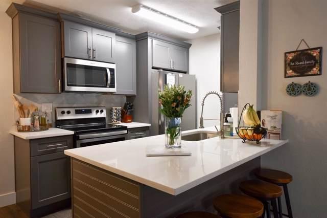 10101 S Gessner Road #708, Houston, TX 77071 (MLS #40513095) :: Texas Home Shop Realty