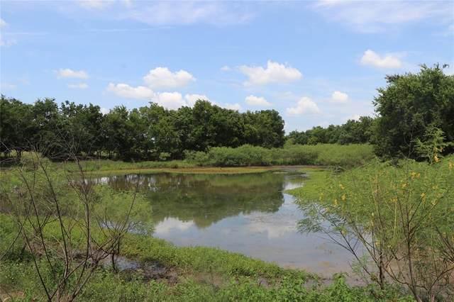 10954 Stefka Road Road, Hempstead, TX 77445 (MLS #40523698) :: The Property Guys