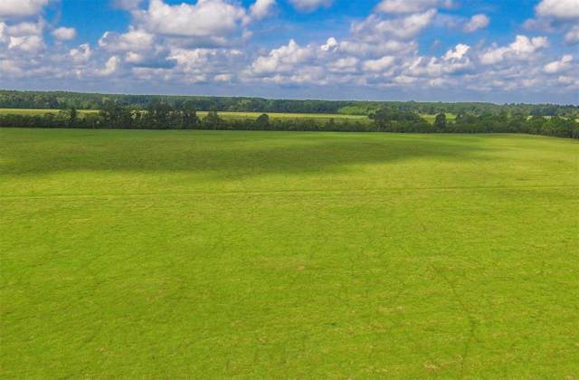 Tract 6 County Road 2285, Tarkington, TX 77327 (MLS #40574069) :: The Bly Team
