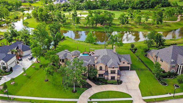 6 Commanders Point, Missouri City, TX 77459 (MLS #4058300) :: The Sansone Group