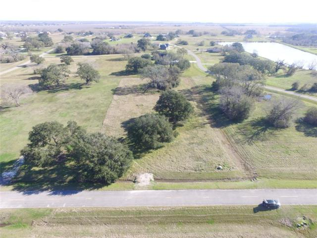 514 Cavalry Trail Drive, Rosharon, TX 77583 (MLS #40662586) :: JL Realty Team at Coldwell Banker, United