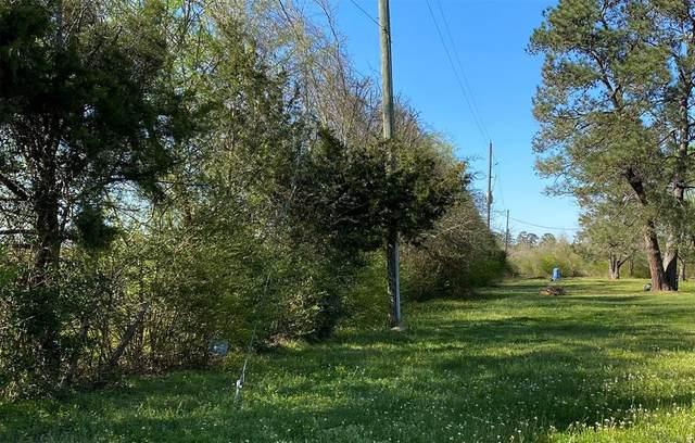 0 Old Hempstead Road, Magnolia, TX 77355 (MLS #40683588) :: Guevara Backman