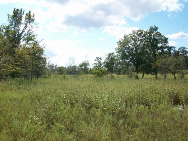 6224 Farm Road 2 N, Navasota, TX 77868 (MLS #40701819) :: Magnolia Realty