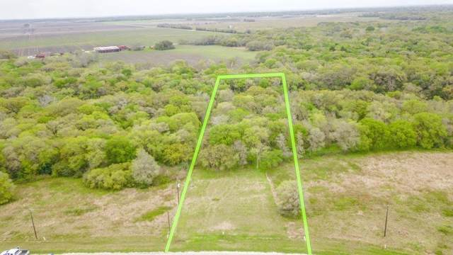 Lot 23 River Hollow Way, Blessing, TX 77419 (MLS #40764213) :: The SOLD by George Team