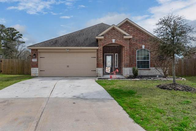20318 Sir Penguin Drive, Hockley, TX 77447 (MLS #40798541) :: Michele Harmon Team