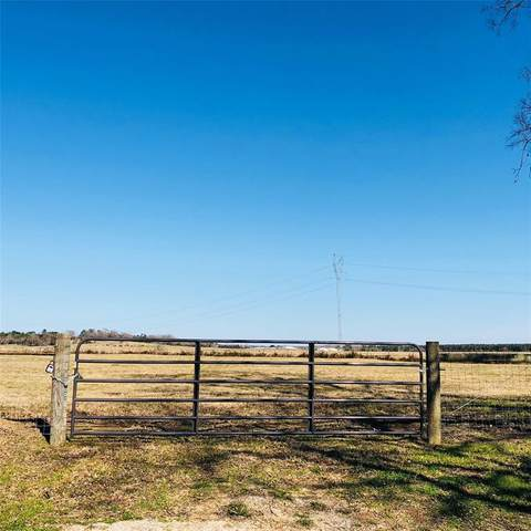 00 E Cr 4500, Crockett, TX 75835 (MLS #40801259) :: Homemax Properties