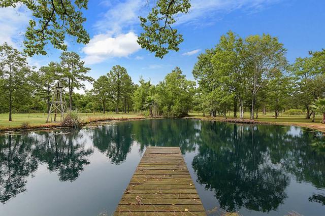 8104 Fm 686, Dayton, TX 77535 (MLS #40809796) :: Texas Home Shop Realty