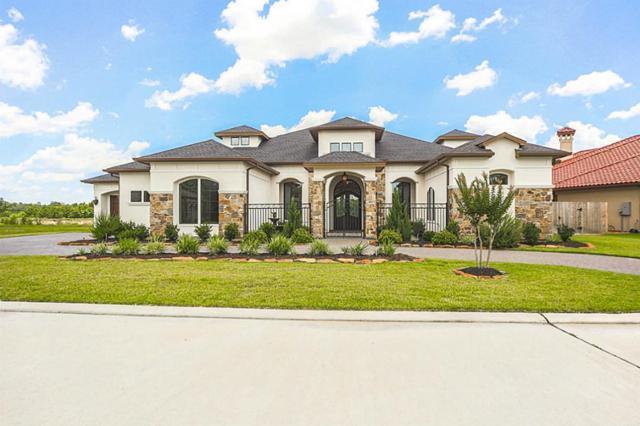 23218 Vista De Tres Lagos Drive, Spring, TX 77389 (MLS #40822187) :: Green Residential