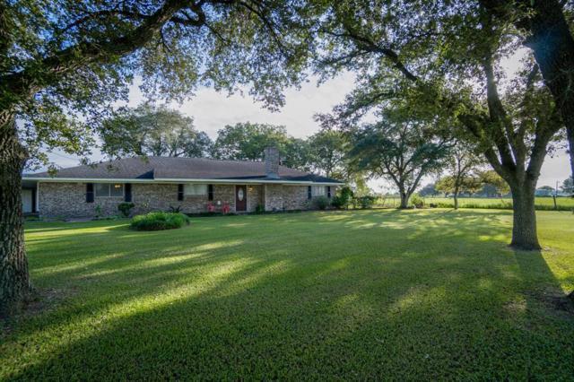 2555 Straznicky Road, Beasley, TX 77417 (MLS #40823473) :: Caskey Realty
