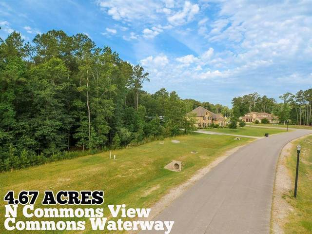 506 N Commons View Drive, Houston, TX 77336 (MLS #40980483) :: The Freund Group