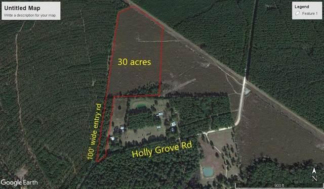 TBD30A Holly Grove Rd, Livingston, TX 77351 (MLS #41021177) :: Michele Harmon Team