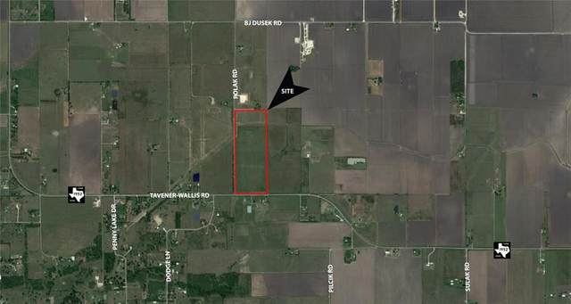 0 Fm 1952 And Polak Road, Wallis, TX 77485 (MLS #41080766) :: The Home Branch