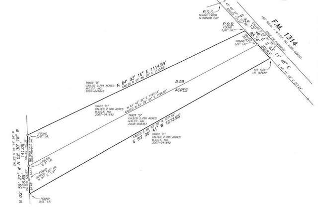 TBA Fm 1314 Road, Porter, TX 77302 (MLS #41096385) :: Lerner Realty Solutions