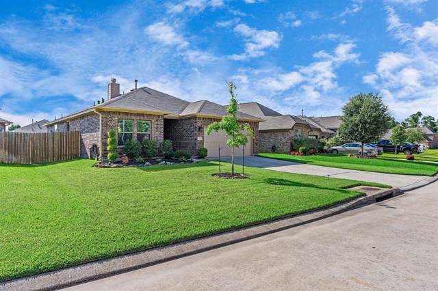 221 Country Crossing Circle, Magnolia, TX 77354 (MLS #41176393) :: Ellison Real Estate Team