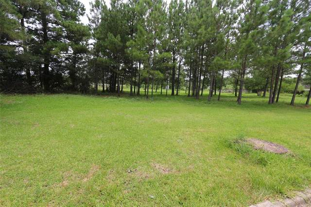 TBD Woodlake, Houston, TX 77336 (MLS #41193791) :: Michele Harmon Team