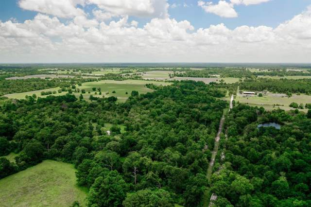 000 Cr 3455 A Road, Lovelady, TX 75851 (MLS #41206435) :: The Sold By Valdez Team