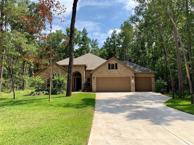 11033 Shadow View Drive, Conroe, TX 77304 (MLS #41215099) :: The Home Branch