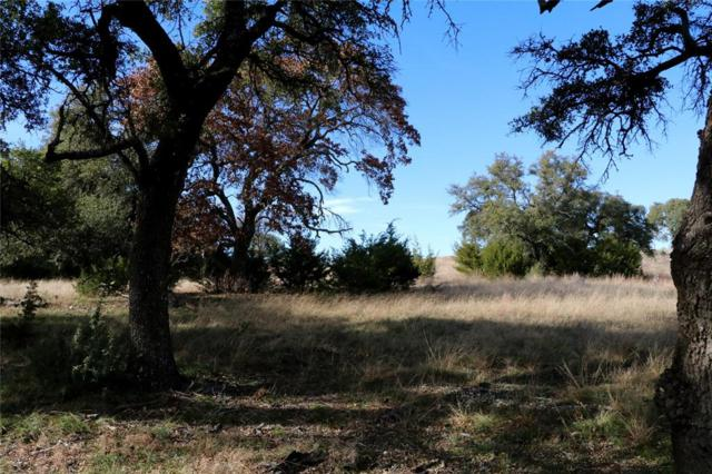 00 S Waterbuck Way, Lampasas, TX 76550 (MLS #41236706) :: The Heyl Group at Keller Williams