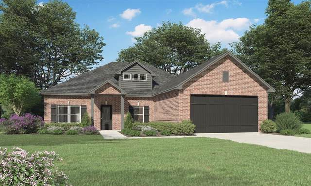 2028 E Lake Drive, Huntsville, TX 77340 (MLS #41247803) :: The SOLD by George Team