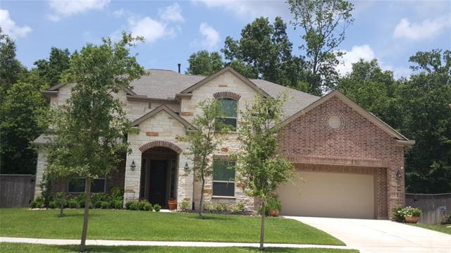 18804 Collins View Drive, New Caney, TX 77357 (MLS #41252438) :: The SOLD by George Team