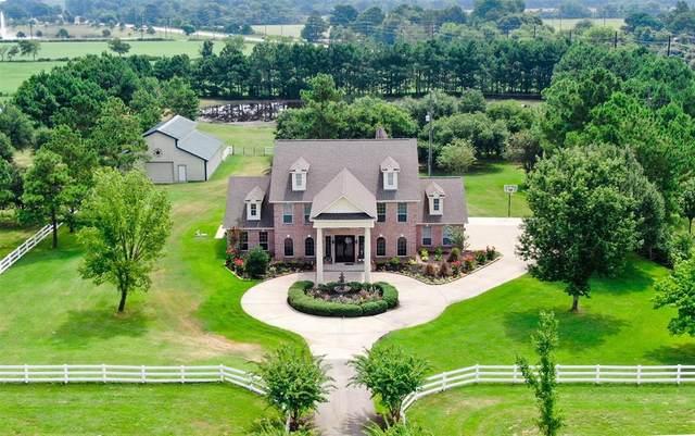 110 Hunters Creek Way, Hockley, TX 77447 (MLS #41275343) :: All Cities USA Realty