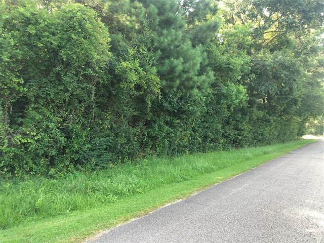 TBD- 1 County Road 2224, Cleveland, TX 77327 (MLS #41301300) :: Bay Area Elite Properties