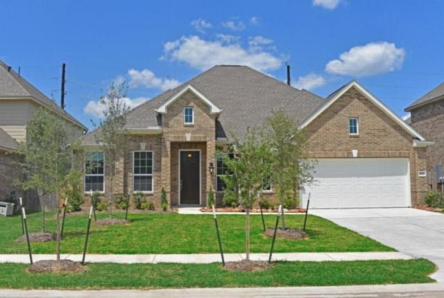 7027 Pearl Terrace Lane, Rosenberg, TX 77469 (MLS #41374126) :: The Heyl Group at Keller Williams