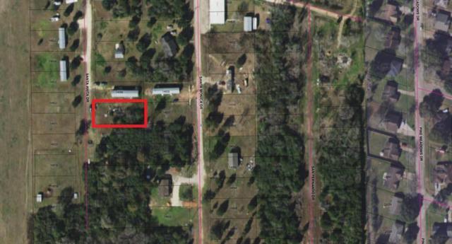 0 Santa Anita Drive, Hempstead, TX 77445 (MLS #41406668) :: Texas Home Shop Realty