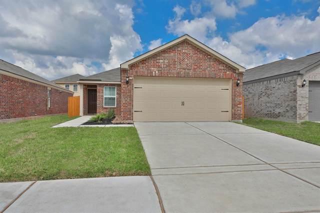 6262 El Oro Drive, Houston, TX 77048 (MLS #41443106) :: Texas Home Shop Realty
