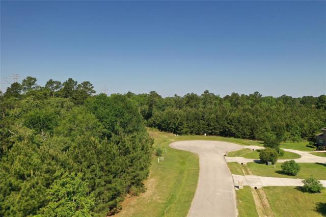 4410 Chateau Creek Way, Spring, TX 77386 (MLS #41445910) :: Texas Home Shop Realty