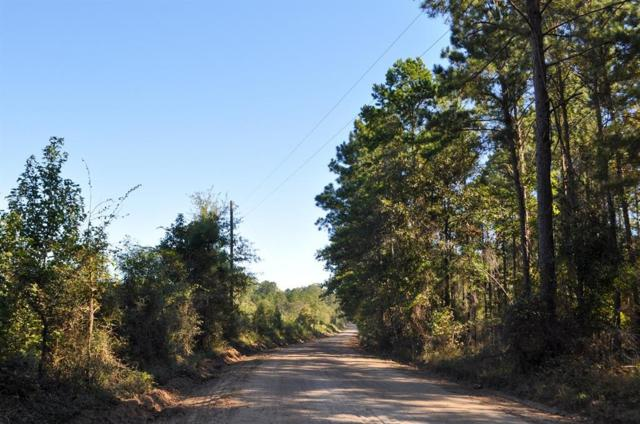 34 Ac Moore Farm Road, Huntington, TX 75949 (MLS #4145111) :: The Heyl Group at Keller Williams