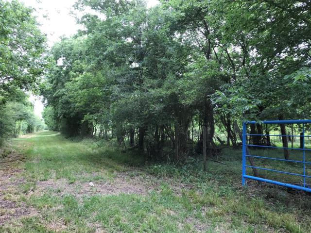 2146 County Road 2010, Hardin, TX 77561 (MLS #41467847) :: Giorgi Real Estate Group