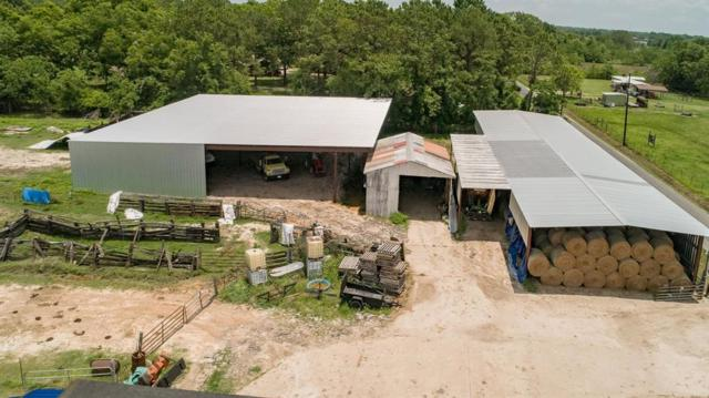 17308 Auction Barn Road, Alvin, TX 77511 (MLS #41498325) :: The Queen Team