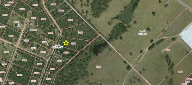 TBD Hollow Bend Bend, Caldwell, TX 77836 (MLS #41534156) :: Christy Buck Team