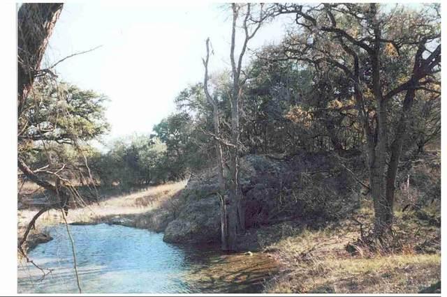 1409 Lavaca Drive, Canyon Lake, TX 78133 (MLS #41643351) :: Green Residential