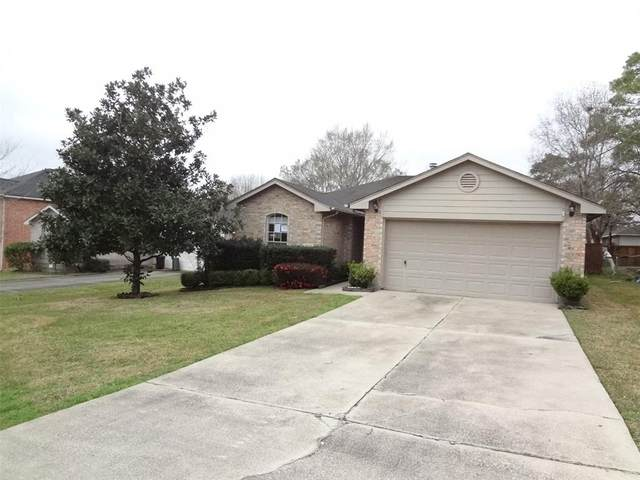 331 Lake View Drive, Montgomery, TX 77356 (MLS #41806765) :: The SOLD by George Team