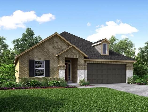 8815 Mugwort Drive, Rosenberg, TX 77469 (MLS #41825630) :: The SOLD by George Team