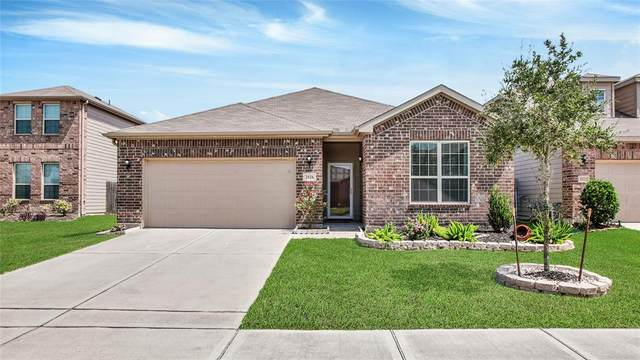 2526 Northern Great White Court, Katy, TX 77449 (MLS #41865980) :: Parodi Group Real Estate