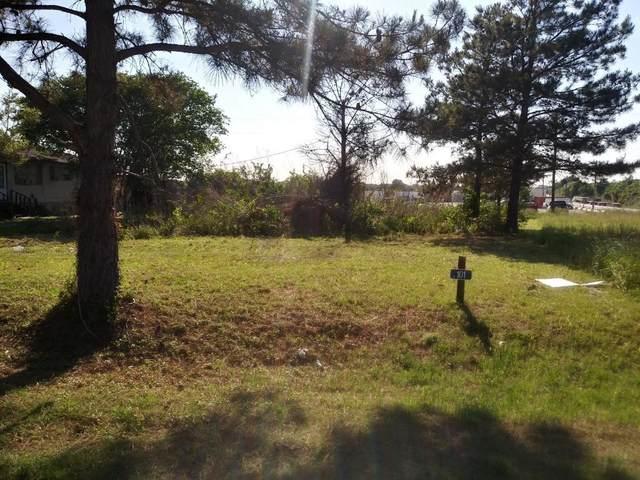 101 Minn Rd, Prairie View, TX 77446 (MLS #41870228) :: My BCS Home Real Estate Group