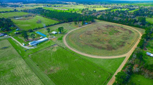 425 County Road 2270, Cleveland, TX 77327 (MLS #41873676) :: Caskey Realty