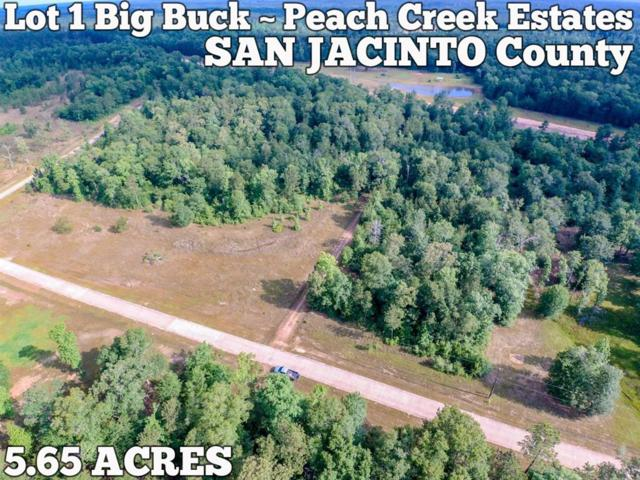 Lot 1 Big Buck Drive, Cleveland, TX 77328 (MLS #4199525) :: Texas Home Shop Realty