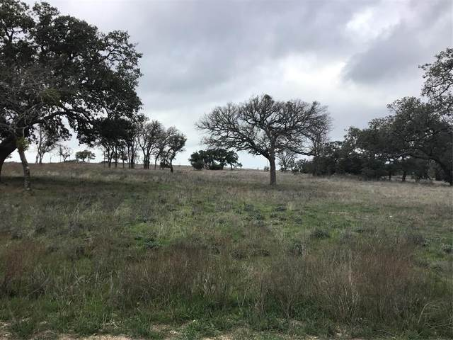 Lot 136 Red Stag Court, Burnet, TX 78611 (MLS #42001915) :: The Heyl Group at Keller Williams