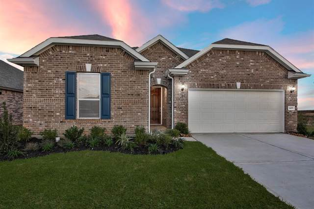 1419 Buffalo Woods Court, Katy, TX 77494 (MLS #42043284) :: Texas Home Shop Realty