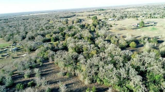 000 Rodemel Ranch Road, Iola, TX 77861 (MLS #42060628) :: The SOLD by George Team
